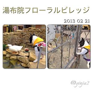 20130221-0006.jpg