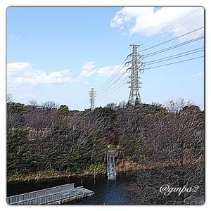 20130304-0001.jpg