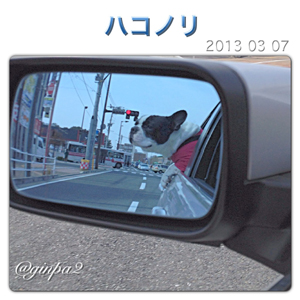 20130307-0001.jpg