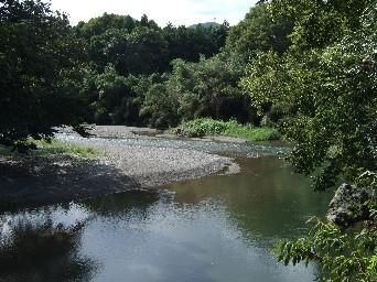 高麗神社近くの川