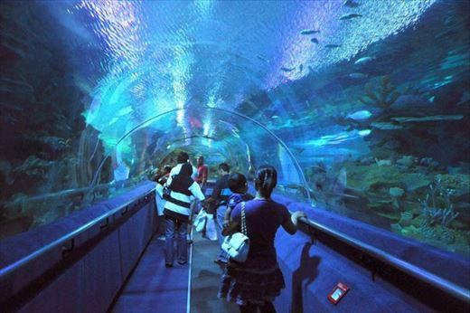 aquariaklcc01.jpg
