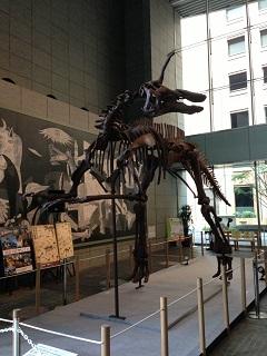 丸の内オアゾ 草食恐竜