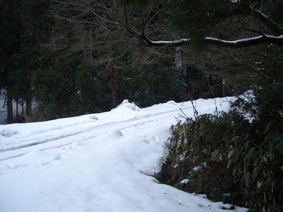 kiotoshiyama 036