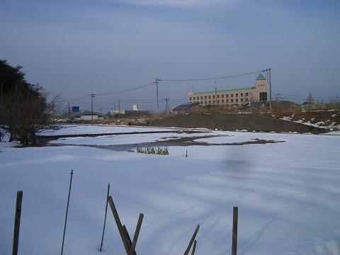ryuukoujizaka 058