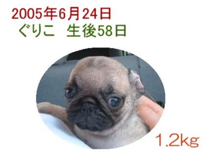 cimg2050_1.jpg