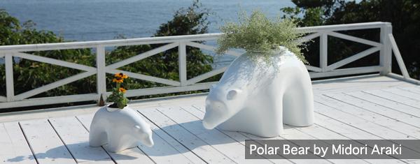 polarforblog.jpg