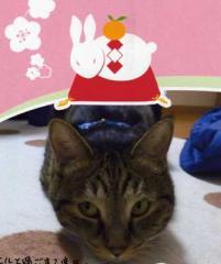 nengajou3.jpg