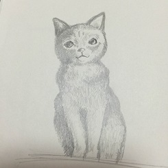cat20141113.jpg
