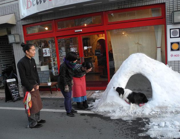 icehouse2DSCN2152.jpg