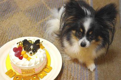 ほたる5歳ケーキと