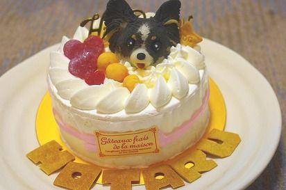 ほたる5歳ケーキ