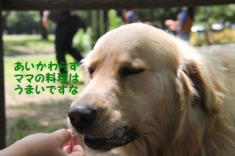 20110522_09_R.jpg
