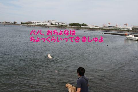 20110522_13_R.jpg