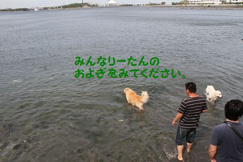 20110522_16_R.jpg