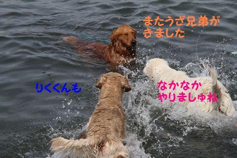 20110522_19_R.jpg
