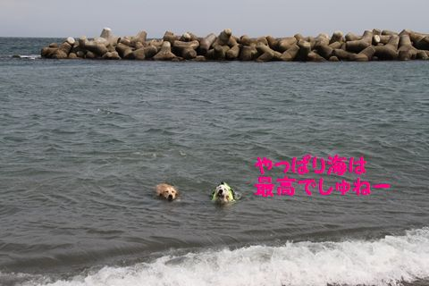 20110529_03_R.jpg