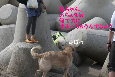 20110529_04_R.jpg
