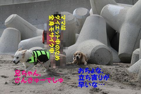 20110529_06_2R.jpg