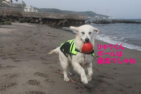 20110529_07_R.jpg