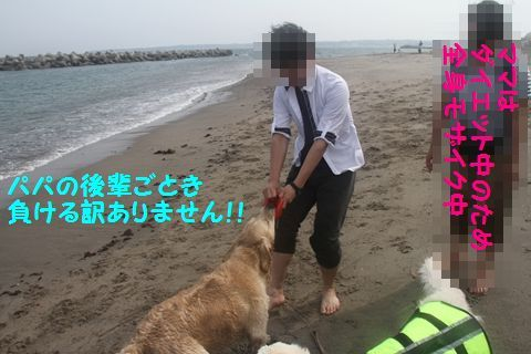 20110529_09_2R.jpg