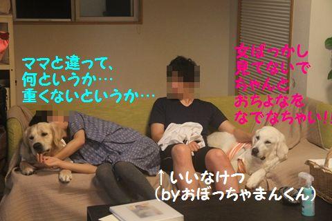 20110529_14_R.jpg