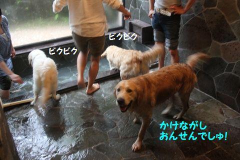 20110531-13_R.jpg