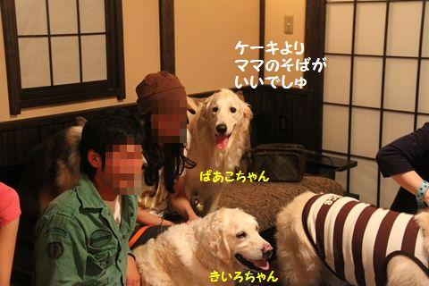 20110603-6_R.jpg