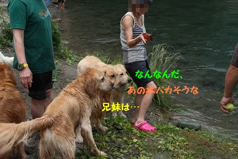 20110610_02_R.jpg