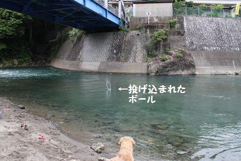 20110610_06_R.jpg