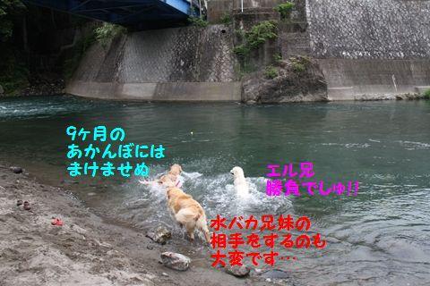 20110610_07_R.jpg