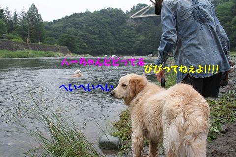 20110610_20_R.jpg