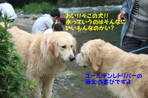 20110610_22_R.jpg