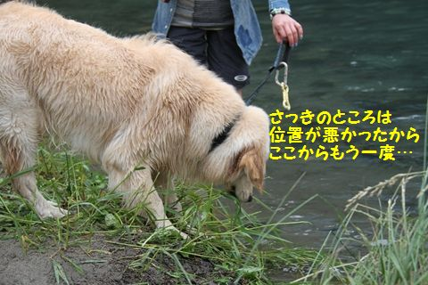 20110610_25_R.jpg