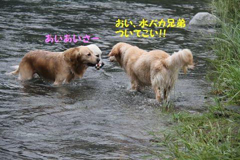 20110610_28_R.jpg