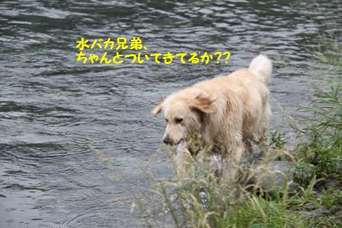 20110610_29_R.jpg