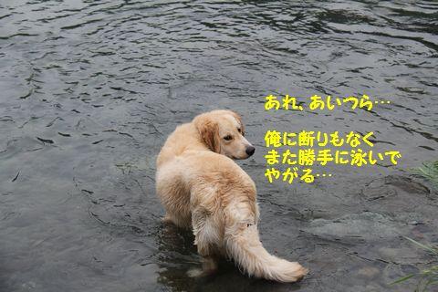20110610_30.jpg