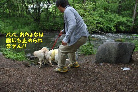 20110613-13_R.jpg