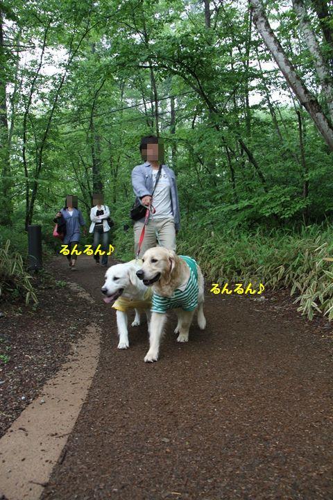 20110613-14_2R.jpg