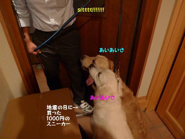 20110620_01_R.jpg