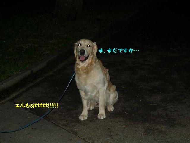 20110620_03_R.jpg
