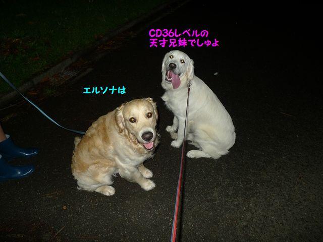 20110620_04_R.jpg