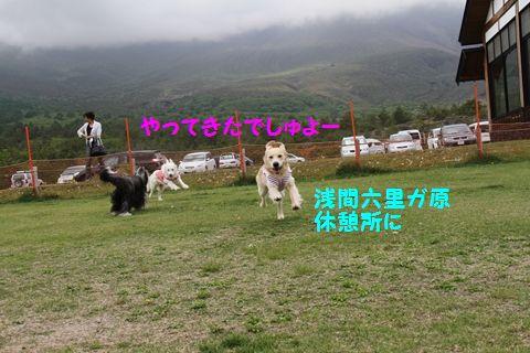 20110628_01_R.jpg