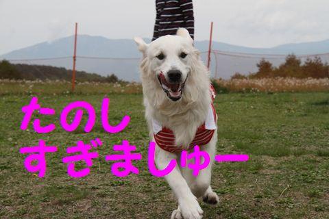 20110628_04_R.jpg