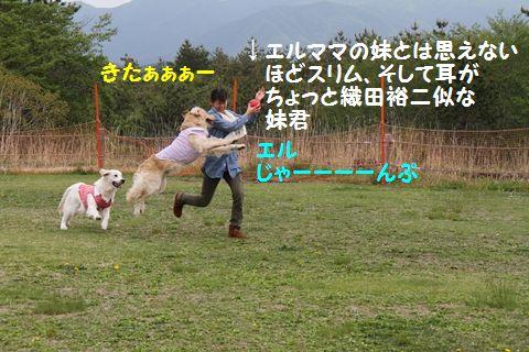 20110628_05_R.jpg