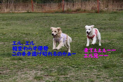 20110628_09_R.jpg