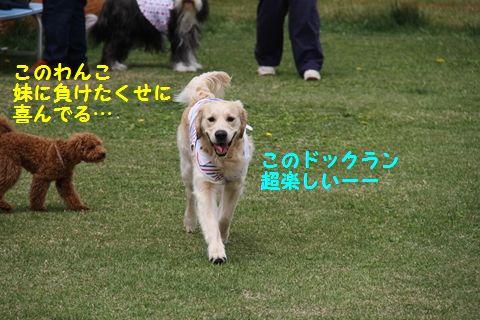 20110628_13_R.jpg