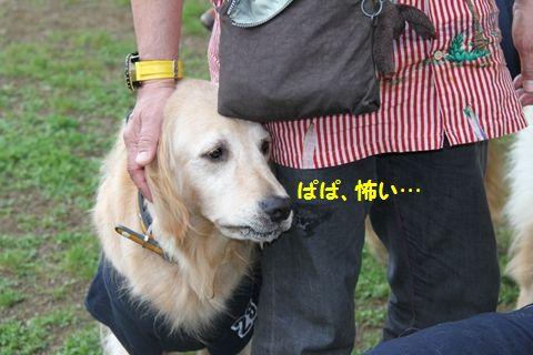 20110709_04_R.jpg