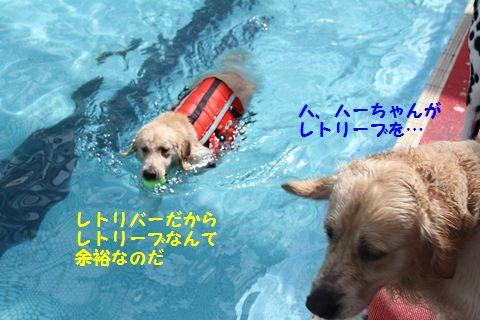 20110714_10_R.jpg