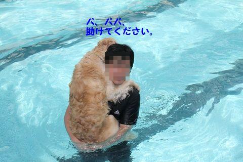 20110714_12_R.jpg
