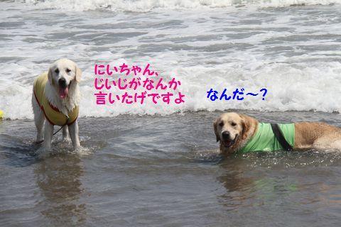 20110715-17.jpg